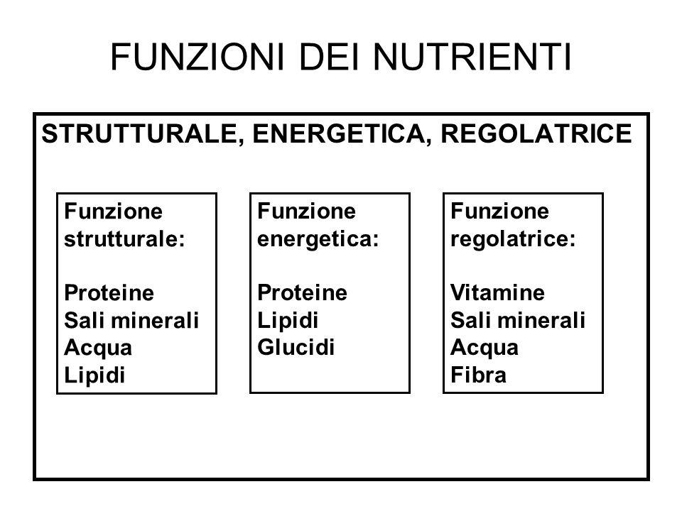 FUNZIONI DEI NUTRIENTI