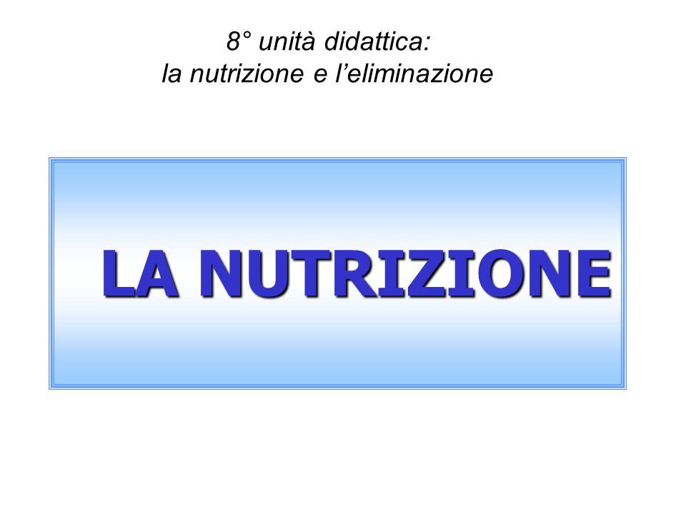 8° unità didattica: la nutrizione e l'eliminazione