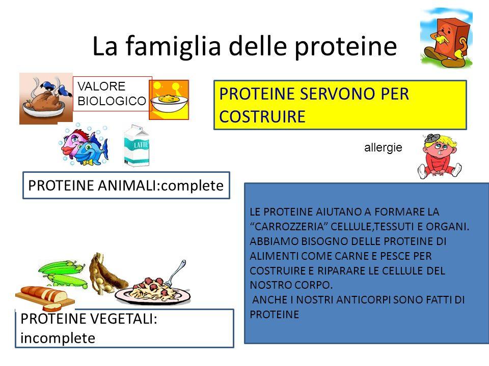 La famiglia delle proteine