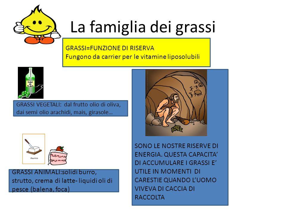 La famiglia dei grassi GRASSI=FUNZIONE DI RISERVA