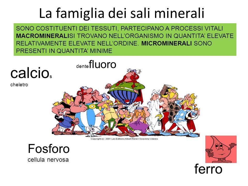La famiglia dei sali minerali