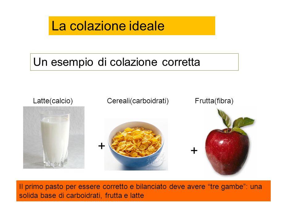 La colazione ideale + + Un esempio di colazione corretta Latte(calcio)