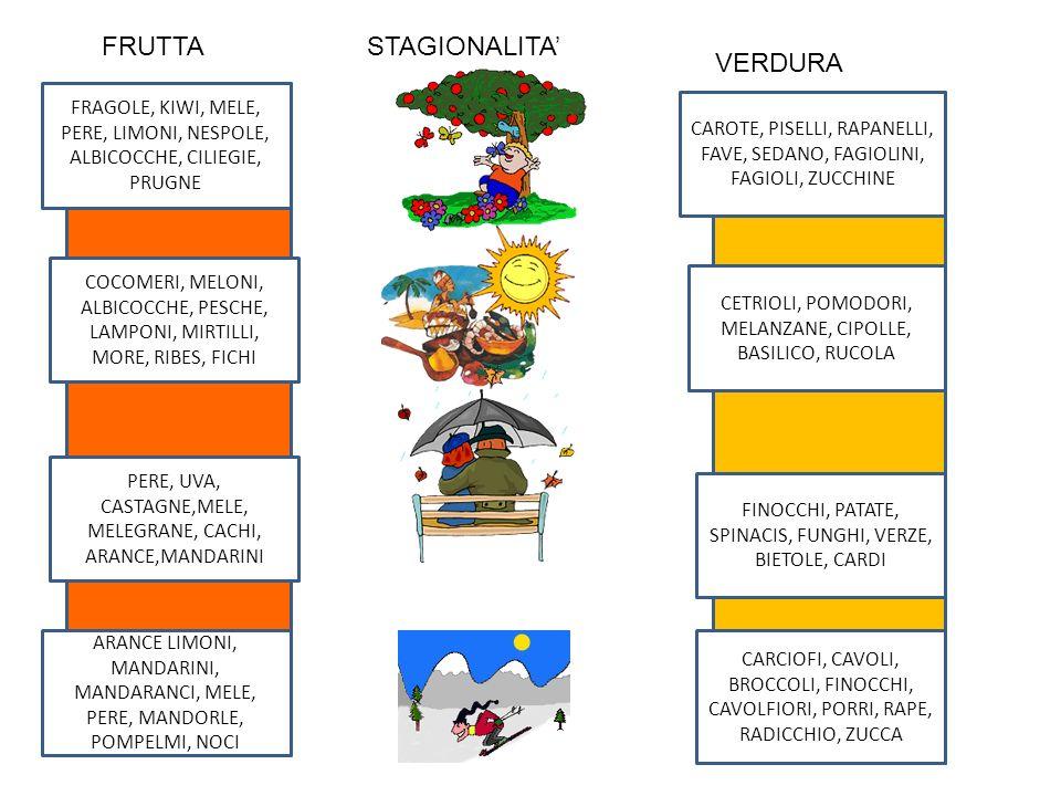 FRUTTA STAGIONALITA' VERDURA