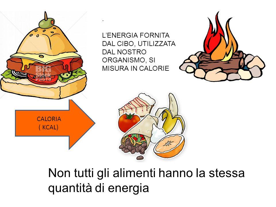 Non tutti gli alimenti hanno la stessa quantità di energia