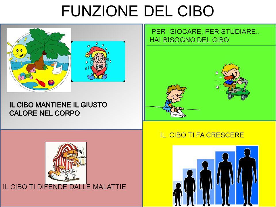FUNZIONE DEL CIBO PER GIOCARE, PER STUDIARE.. HAI BISOGNO DEL CIBO