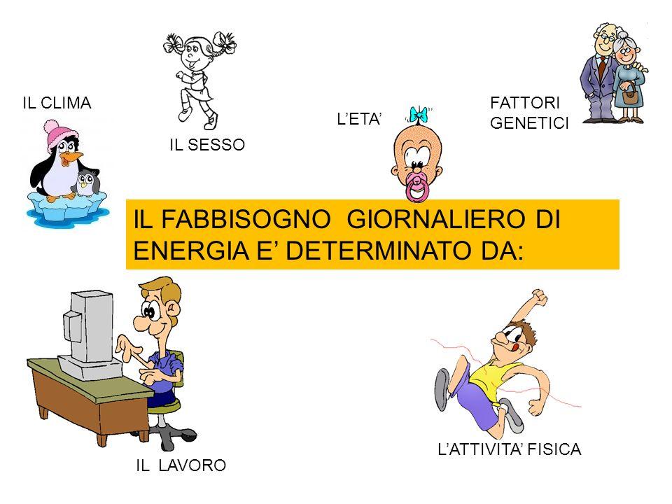 IL FABBISOGNO GIORNALIERO DI ENERGIA E' DETERMINATO DA: