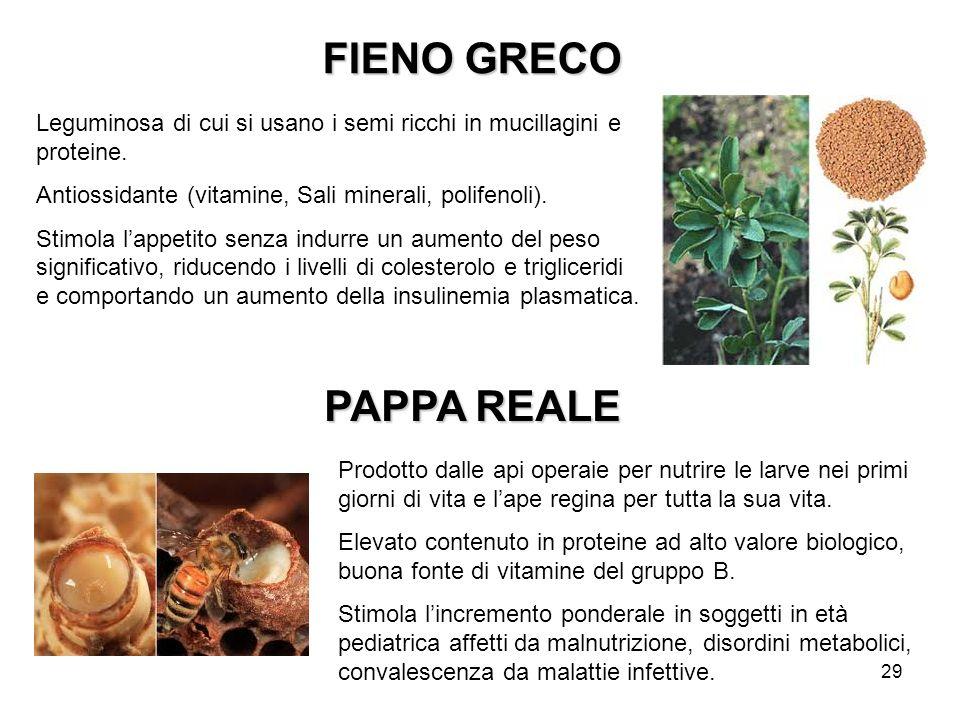 FIENO GRECO PAPPA REALE