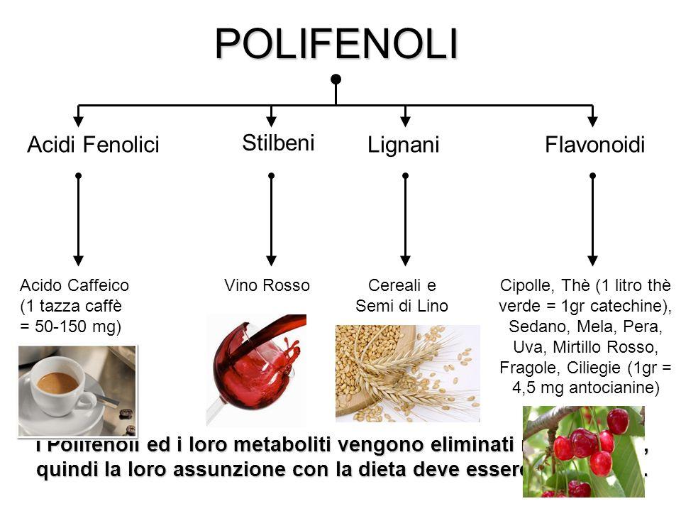 POLIFENOLI Acidi Fenolici Lignani Stilbeni Flavonoidi