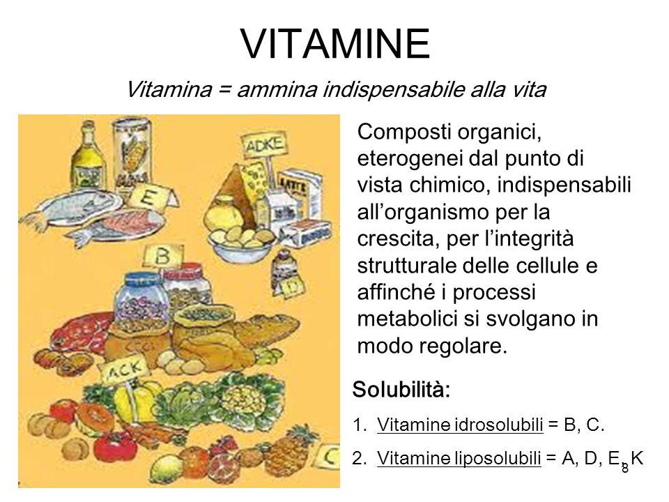 Vitamina = ammina indispensabile alla vita