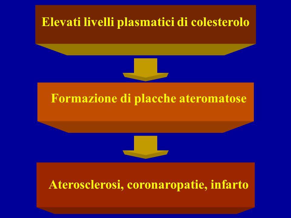 Elevati livelli plasmatici di colesterolo