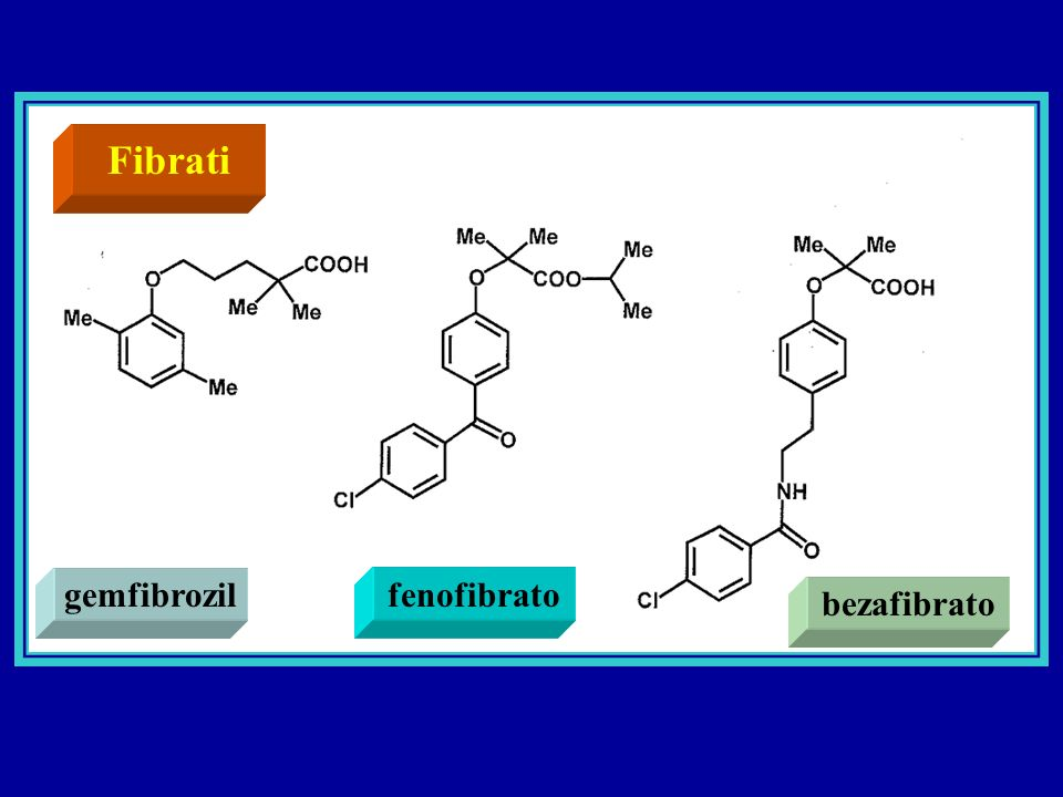 Fibrati gemfibrozil fenofibrato bezafibrato