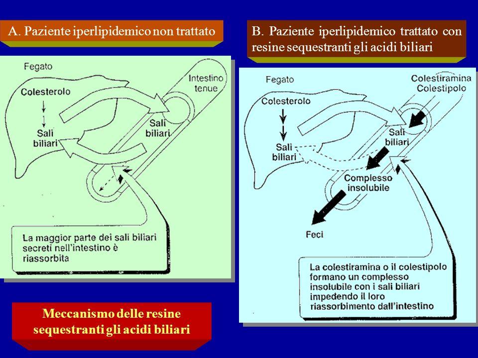Meccanismo delle resine sequestranti gli acidi biliari