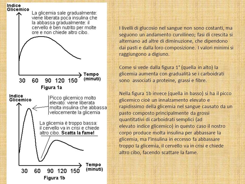 I livelli di glucosio nel sangue non sono costanti, ma seguono un andamento curvilineo; fasi di crescita si alternano ad altre di diminuzione, che dipendono dai pasti e dalla loro composizione. I valori minimi si raggiungono a digiuno.