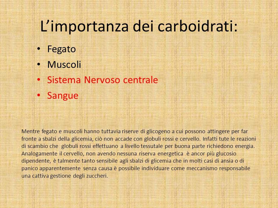 L'importanza dei carboidrati: