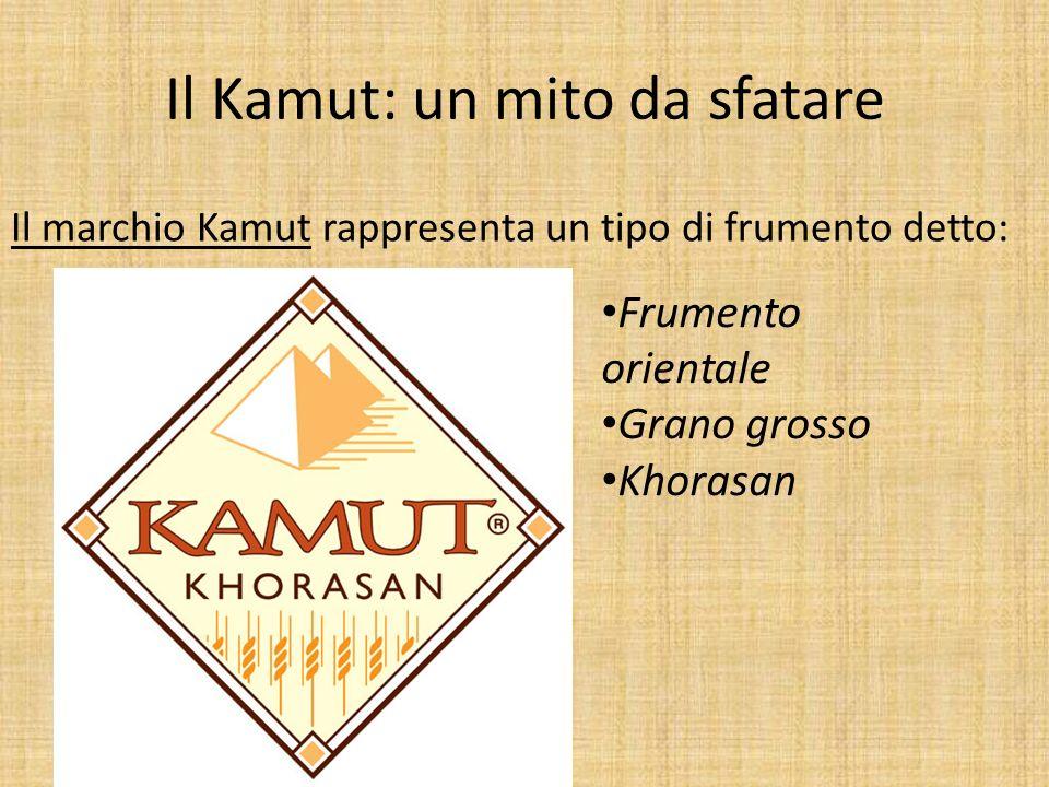Il Kamut: un mito da sfatare