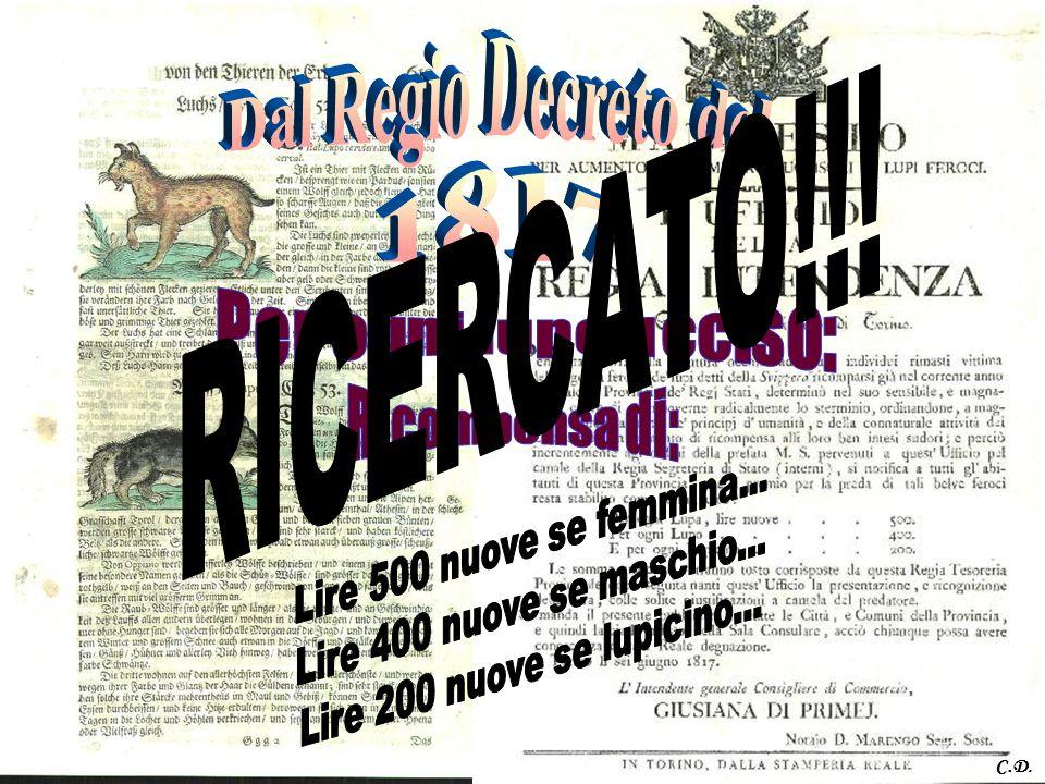 RICERCATO!!! Dal Regio Decreto del 1817 Ricompensa di: