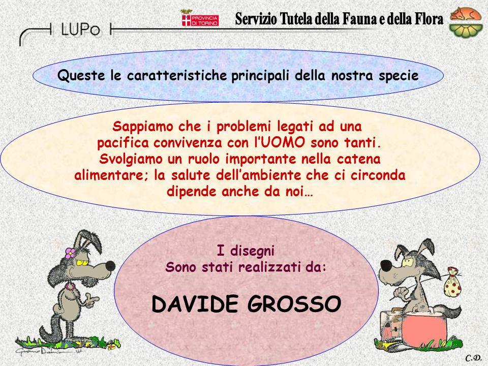 DAVIDE GROSSO Queste le caratteristiche principali della nostra specie