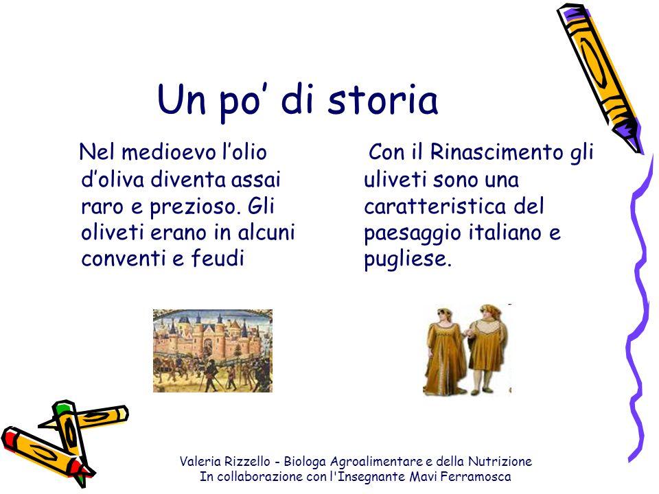Un po' di storia Nel medioevo l'olio d'oliva diventa assai raro e prezioso. Gli oliveti erano in alcuni conventi e feudi.