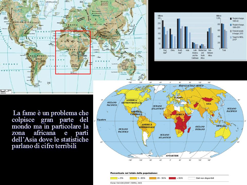La fame è un problema che colpisce gran parte del mondo ma in particolare la zona africana e parti dell'Asia dove le statistiche parlano di cifre terribili