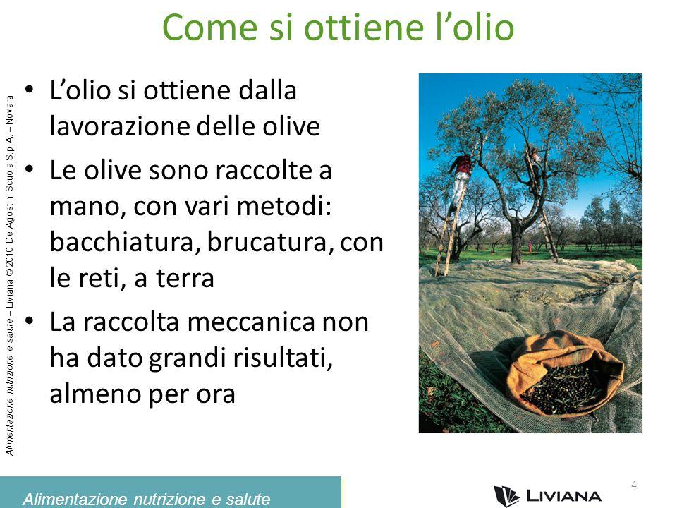Come si ottiene l'olio L'olio si ottiene dalla lavorazione delle olive