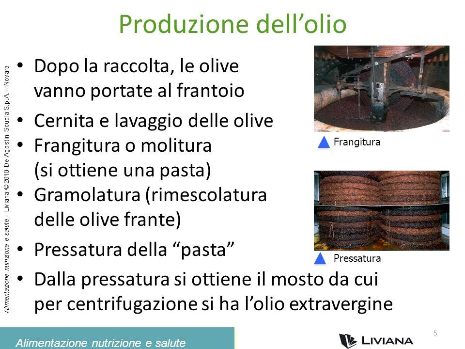 Produzione dell'olio Dopo la raccolta, le olive
