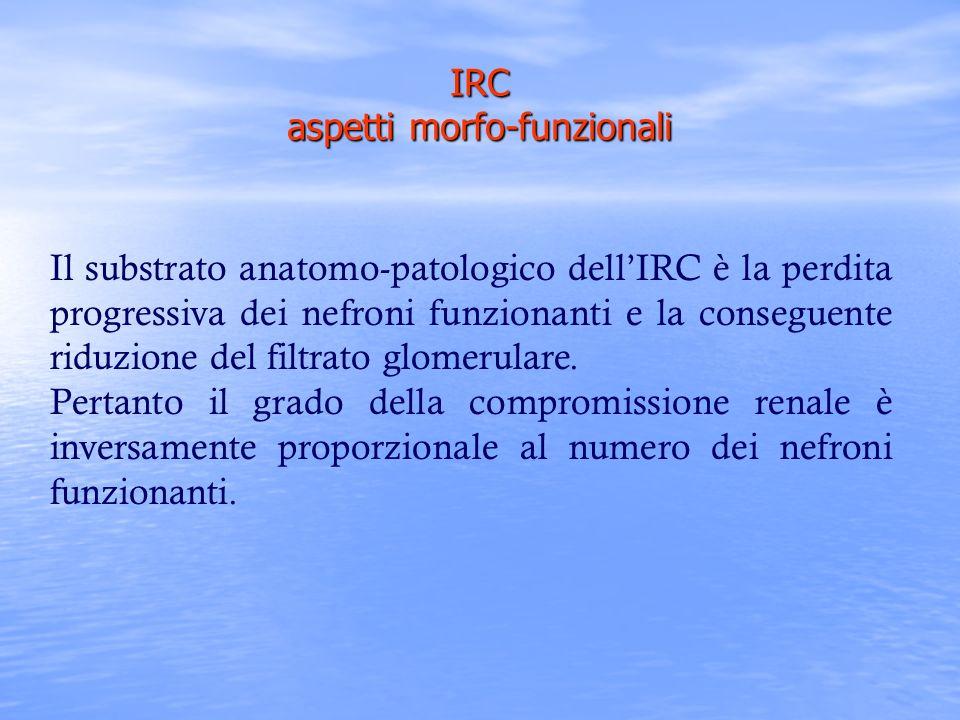 IRC aspetti morfo-funzionali