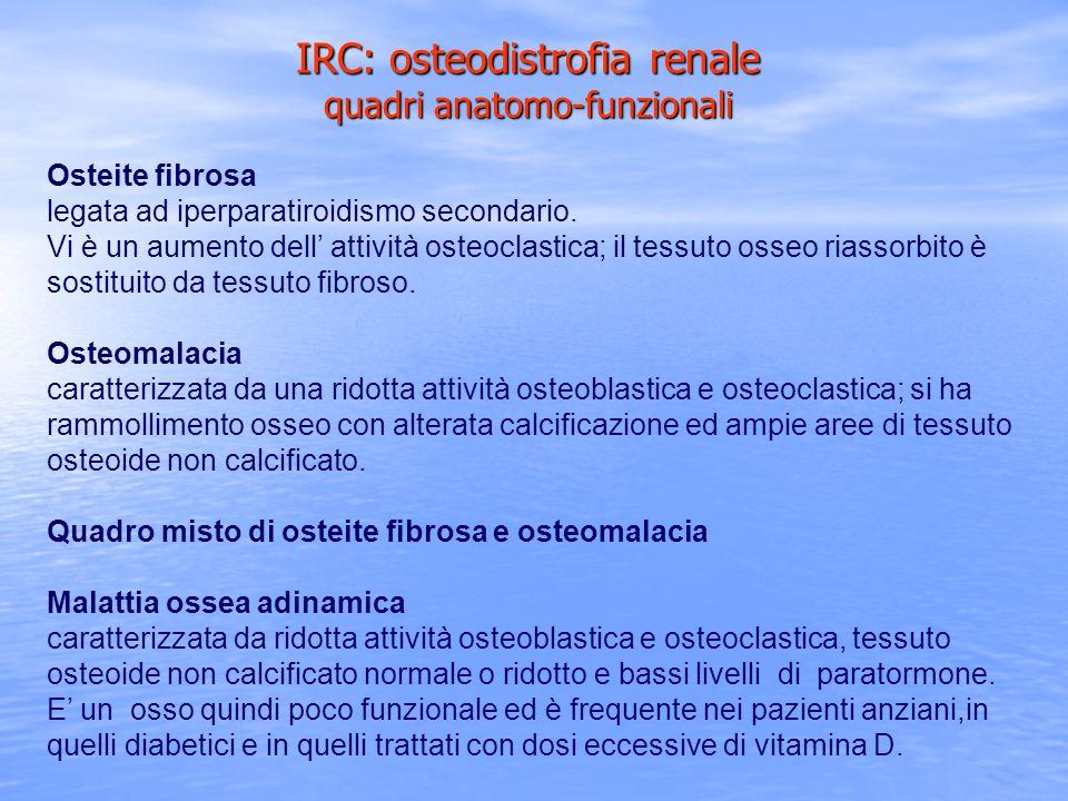 IRC: osteodistrofia renale quadri anatomo-funzionali