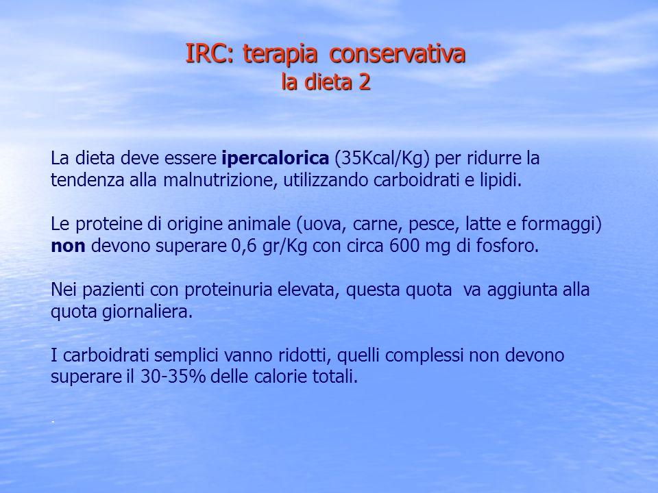 IRC: terapia conservativa la dieta 2