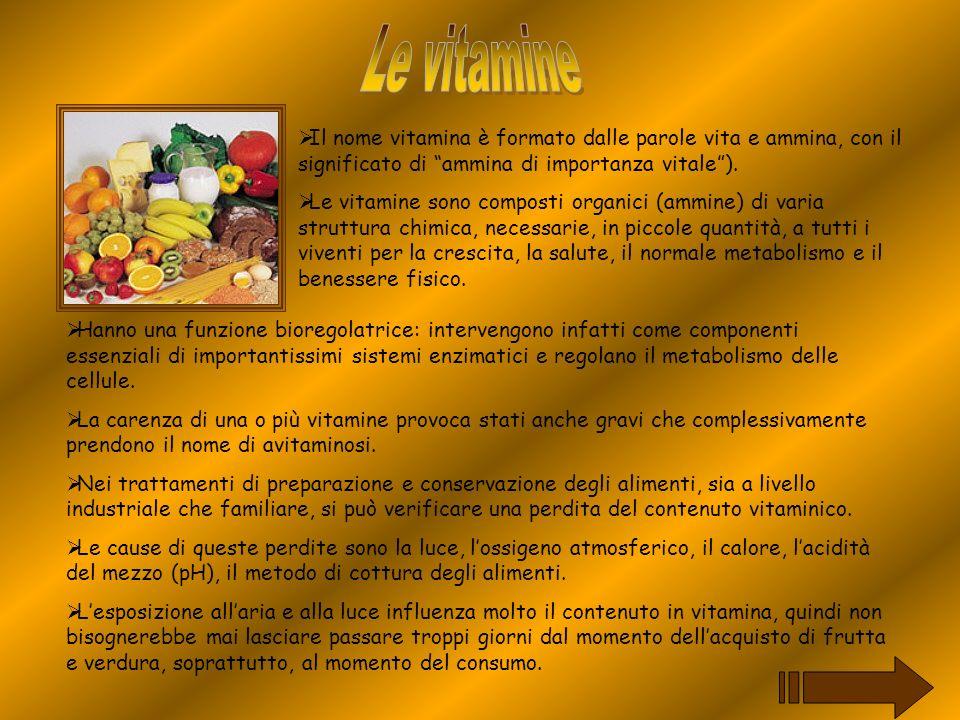 Le vitamine Il nome vitamina è formato dalle parole vita e ammina, con il significato di ammina di importanza vitale ).