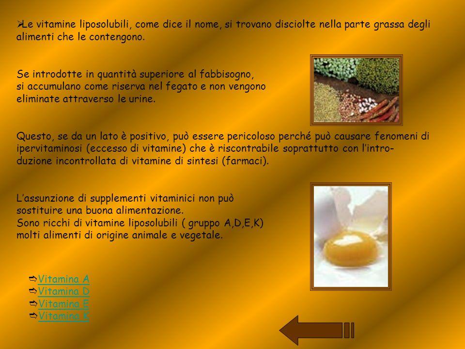 Le vitamine liposolubili, come dice il nome, si trovano disciolte nella parte grassa degli alimenti che le contengono.