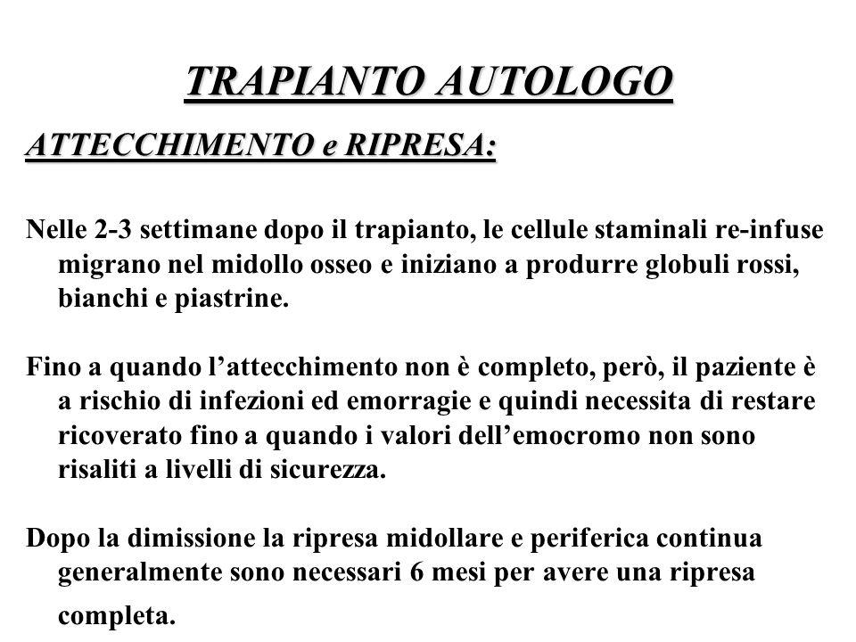 TRAPIANTO AUTOLOGO ATTECCHIMENTO e RIPRESA: