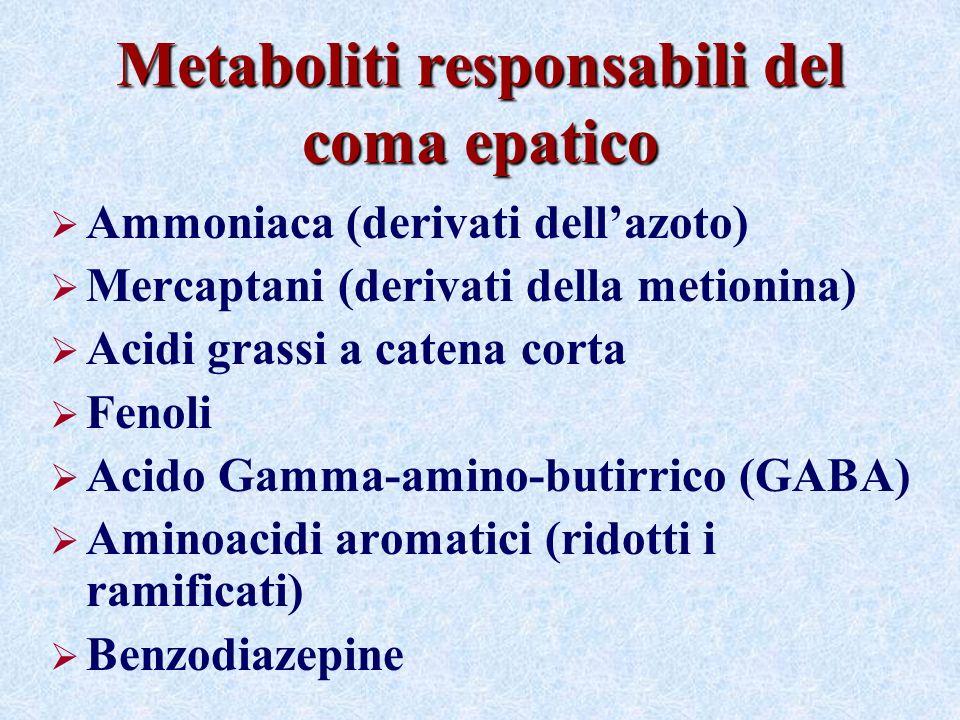Metaboliti responsabili del coma epatico