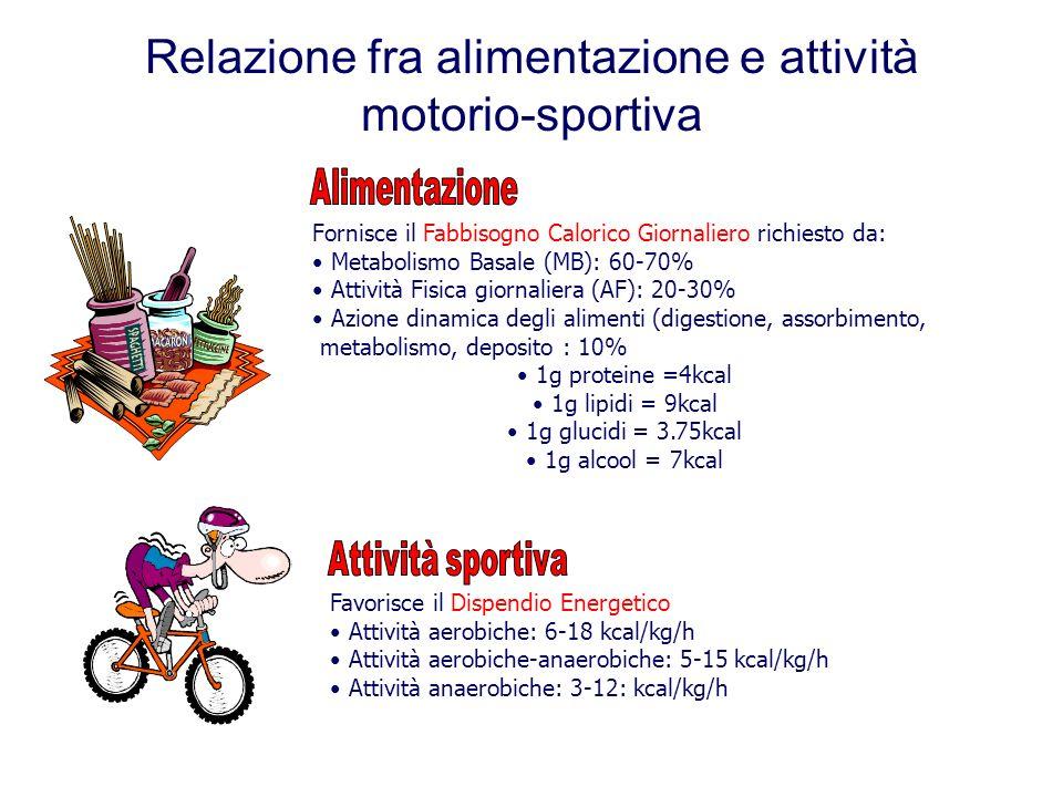 Relazione fra alimentazione e attività motorio-sportiva