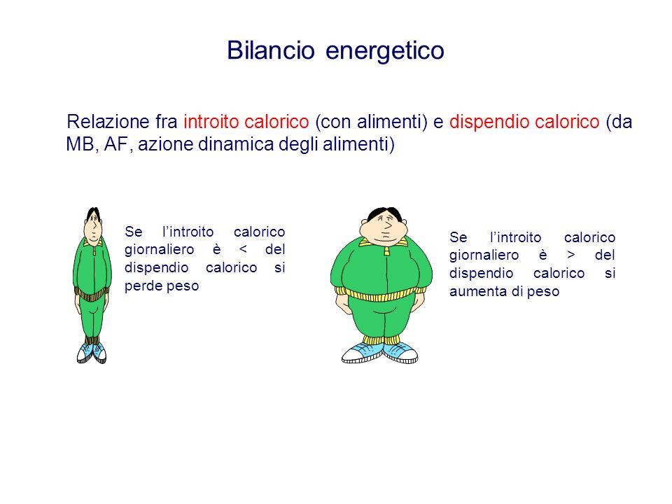 Bilancio energetico Relazione fra introito calorico (con alimenti) e dispendio calorico (da MB, AF, azione dinamica degli alimenti)