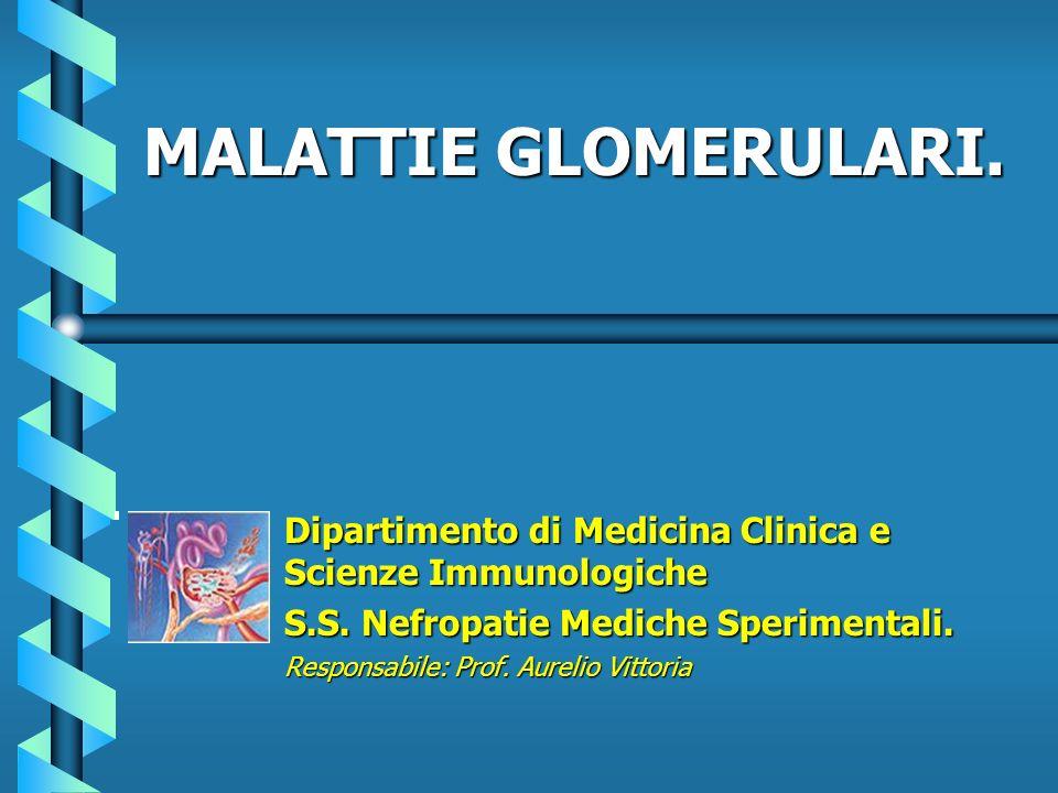 MALATTIE GLOMERULARI. Dipartimento di Medicina Clinica e Scienze Immunologiche. S.S. Nefropatie Mediche Sperimentali.