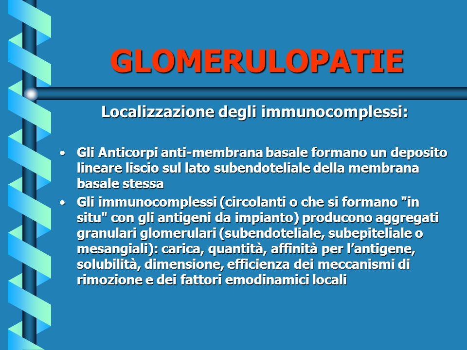 Localizzazione degli immunocomplessi: