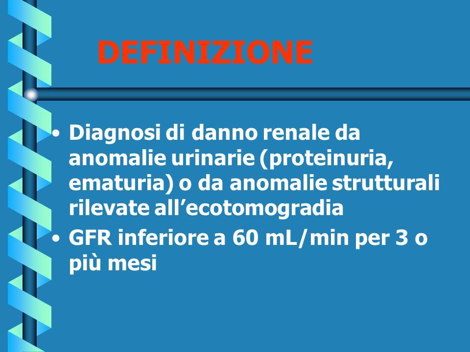 DEFINIZIONE Diagnosi di danno renale da anomalie urinarie (proteinuria, ematuria) o da anomalie strutturali rilevate all'ecotomogradia.
