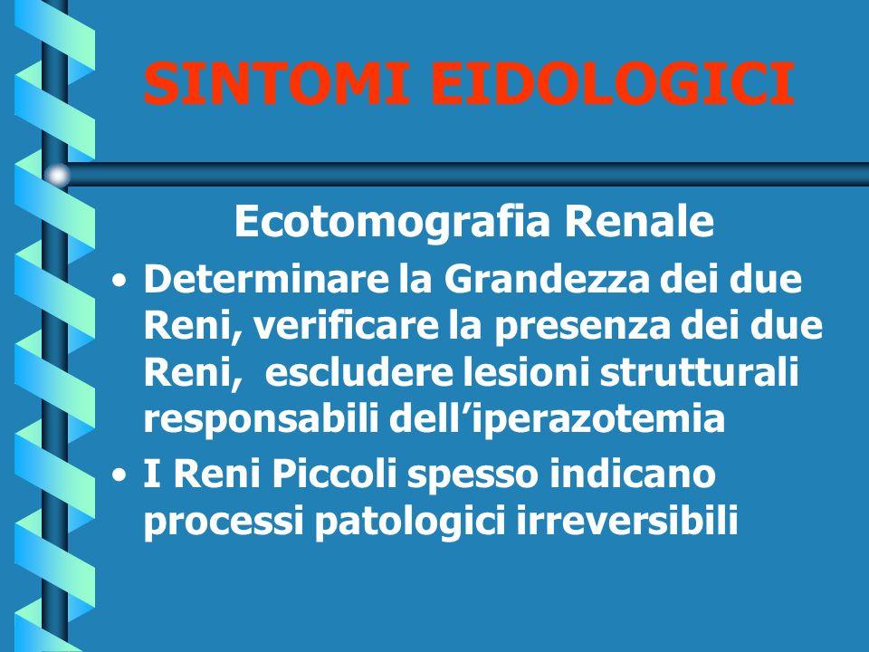 SINTOMI EIDOLOGICI Ecotomografia Renale
