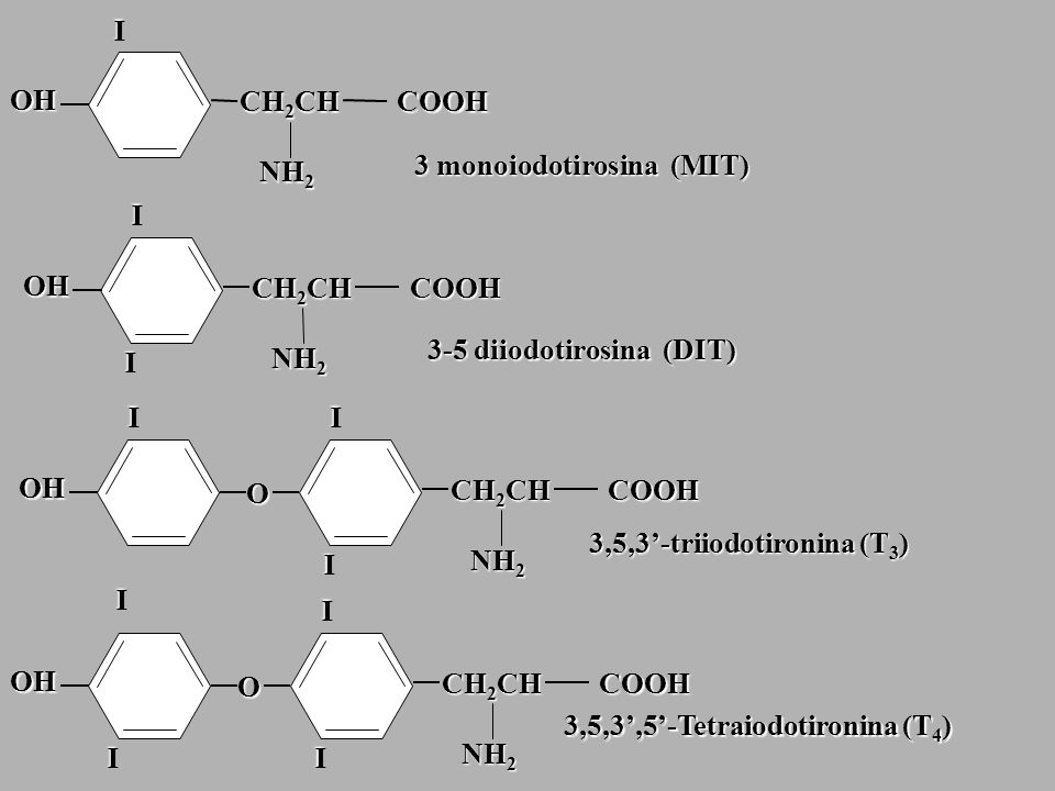 IOH. CH2CH. COOH. 3 monoiodotirosina (MIT) NH2. I. OH. CH2CH. COOH. 3-5 diiodotirosina (DIT) I.