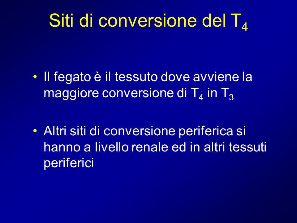 Siti di conversione del T4