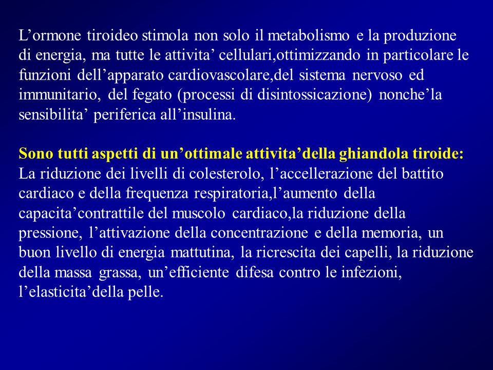 L'ormone tiroideo stimola non solo il metabolismo e la produzione di energia, ma tutte le attivita' cellulari,ottimizzando in particolare le funzioni dell'apparato cardiovascolare,del sistema nervoso ed immunitario, del fegato (processi di disintossicazione) nonche'la sensibilita' periferica all'insulina.