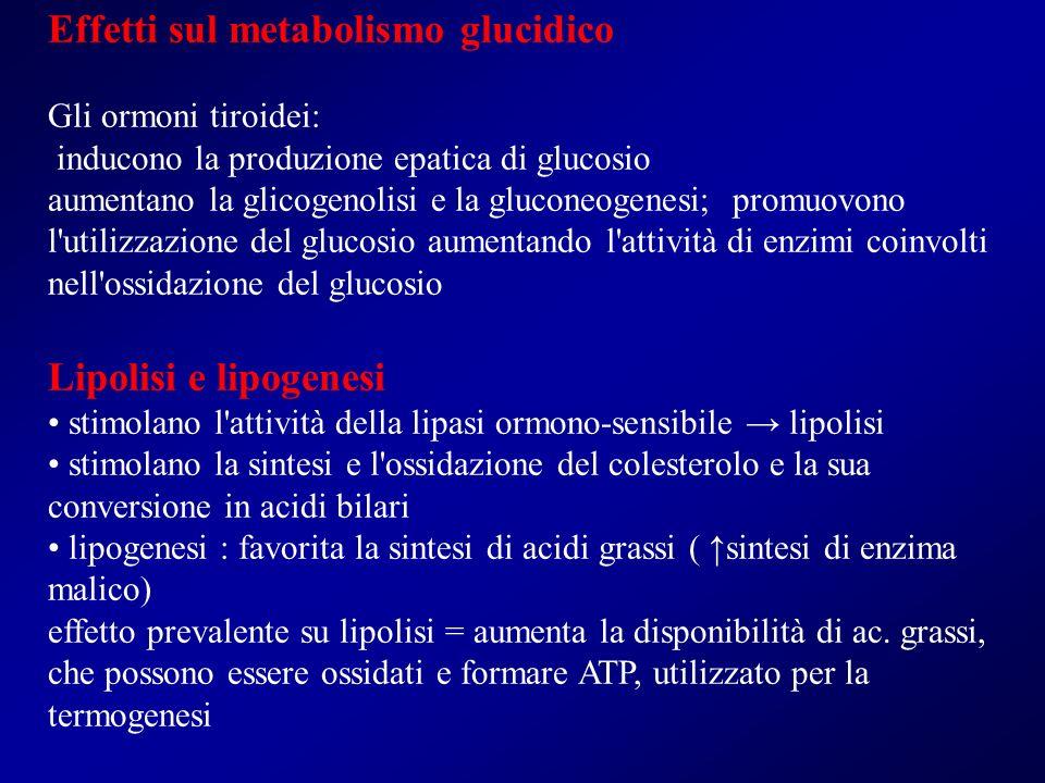 Effetti sul metabolismo glucidico