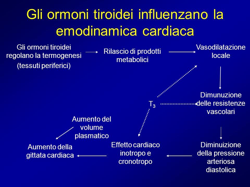 Gli ormoni tiroidei influenzano la emodinamica cardiaca