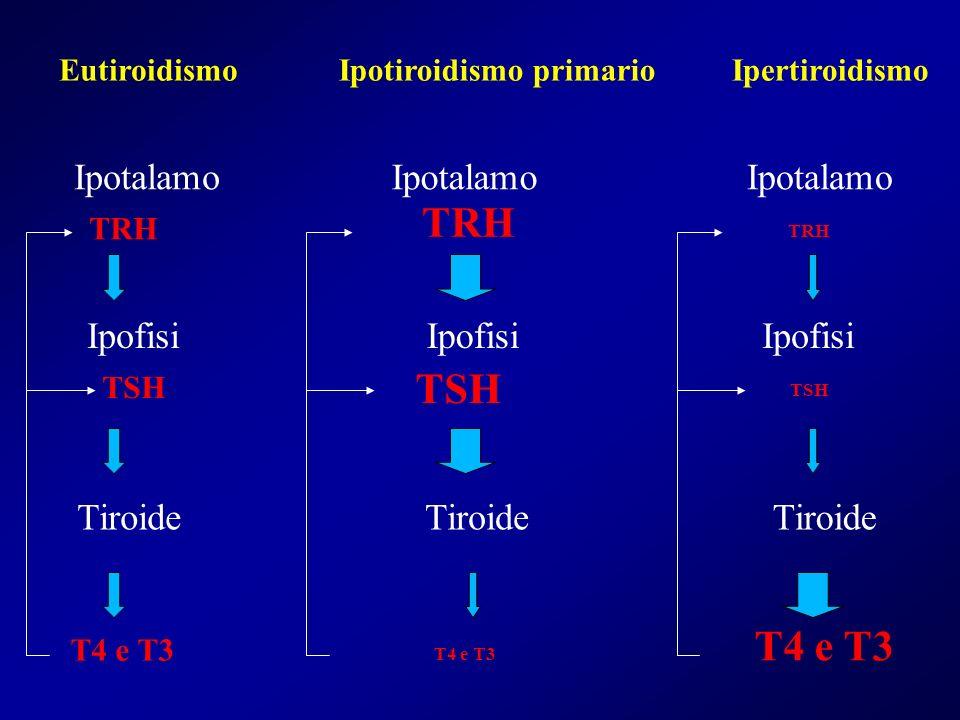 TRH TSH T4 e T3 Ipotalamo Ipotalamo Ipotalamo Ipofisi Ipofisi Ipofisi