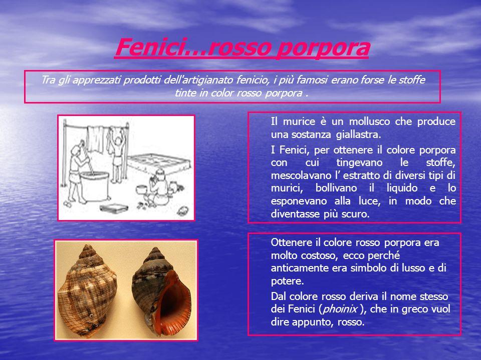 Fenici…rosso porpora Tra gli apprezzati prodotti dell artigianato fenicio, i più famosi erano forse le stoffe tinte in color rosso porpora .
