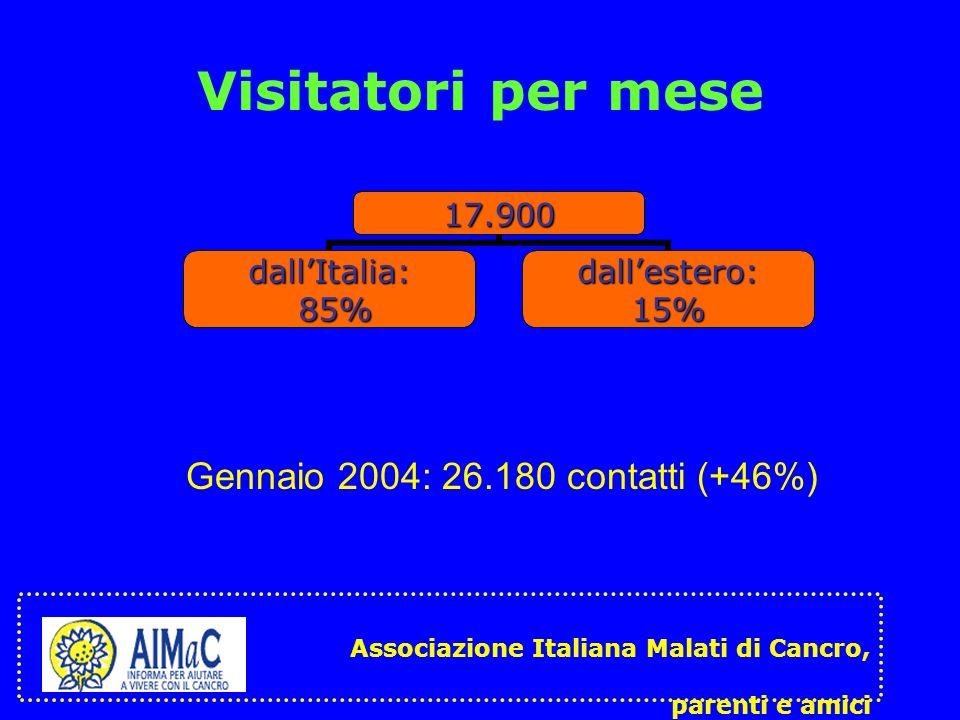 Visitatori per mese Gennaio 2004: 26.180 contatti (+46%)