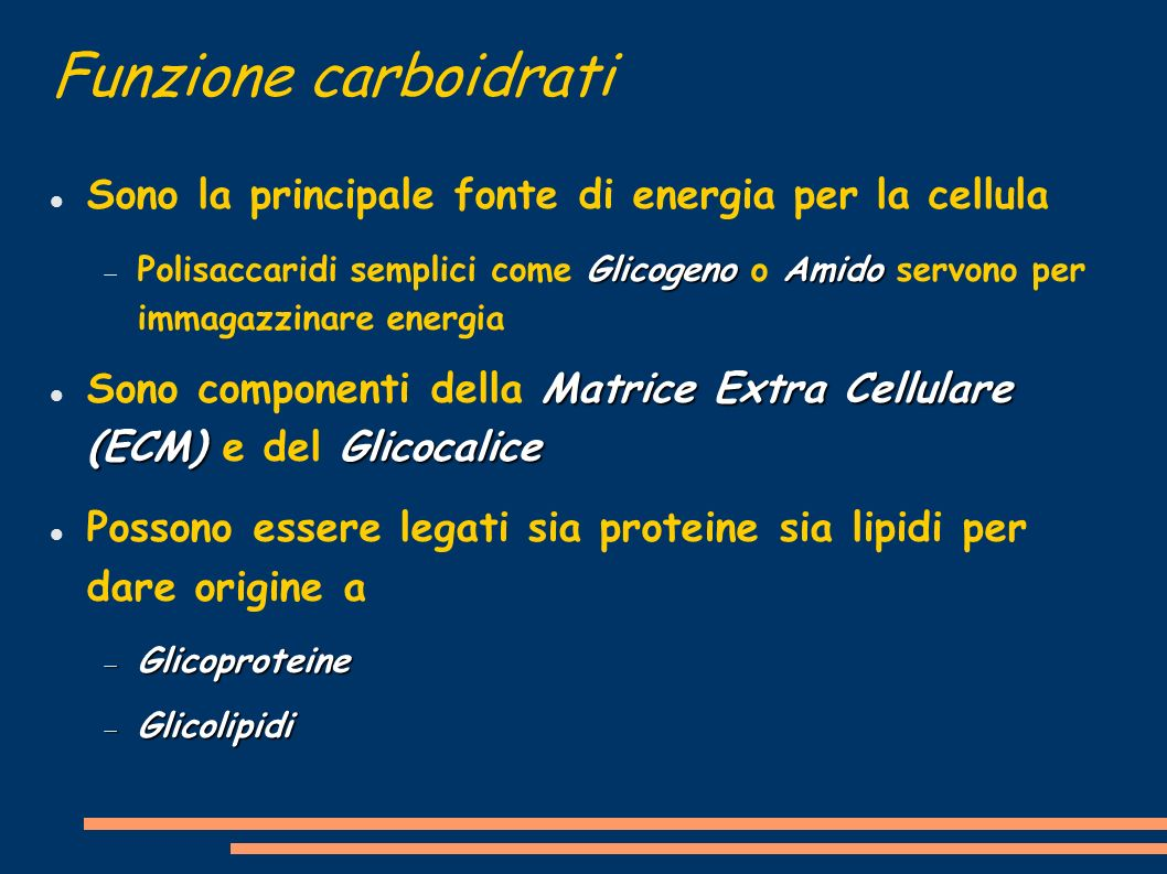Funzione carboidrati Sono la principale fonte di energia per la cellula.