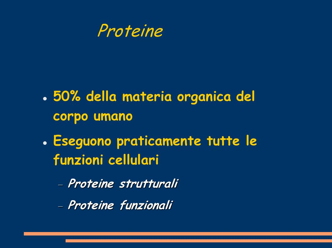 Proteine 50% della materia organica del corpo umano
