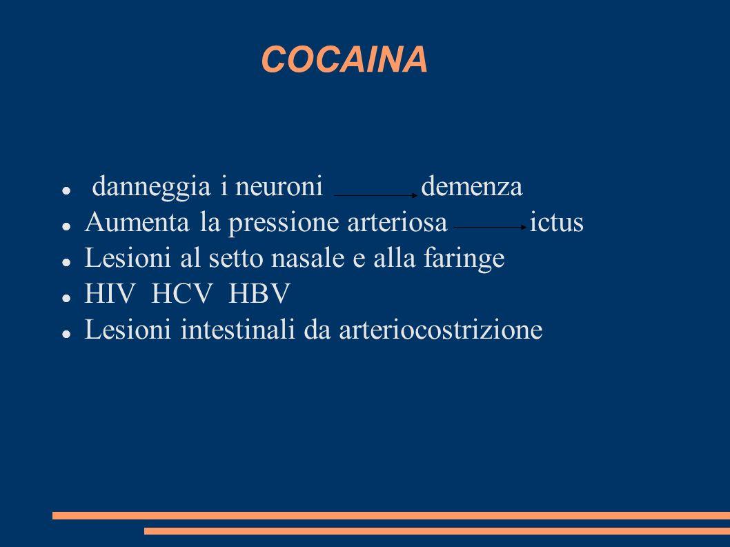 COCAINA danneggia i neuroni demenza