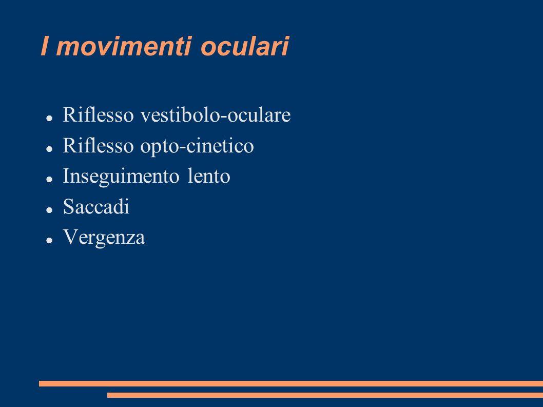 I movimenti oculari Riflesso vestibolo-oculare Riflesso opto-cinetico